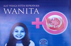 Tempat Model Alat Peraga Reproduksi wanita KIE KIT
